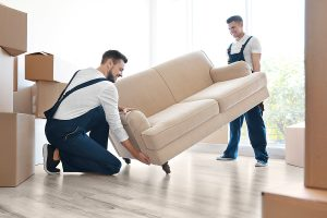 Premium removalists moving a sofa in a new home
