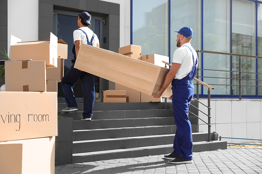 Male premium removalists carrying shelving unit into a new house
